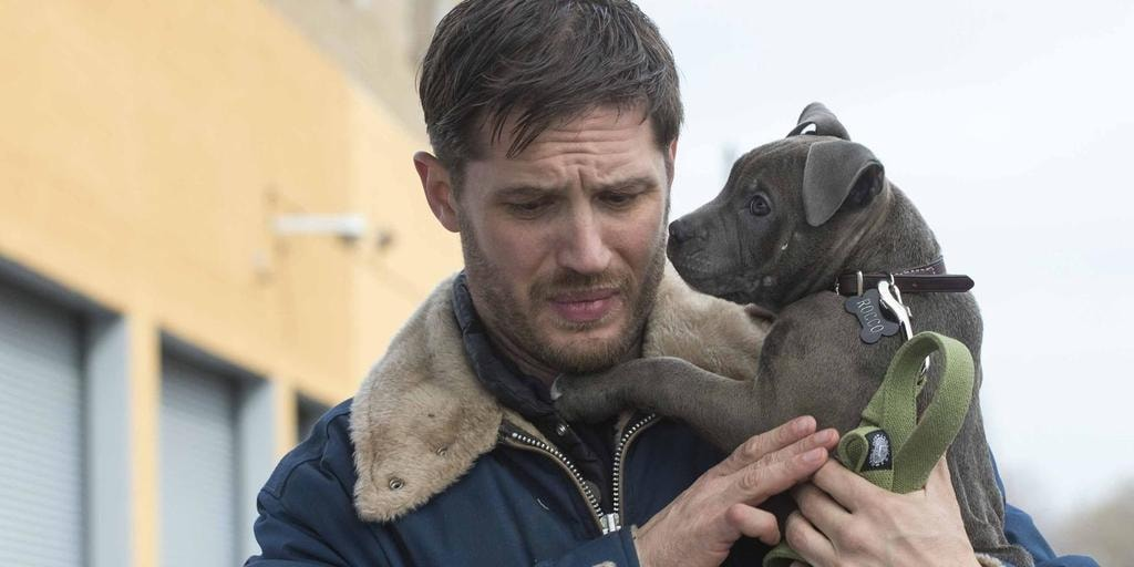 landscape_movies-the-drop-tom-hardy-puppy