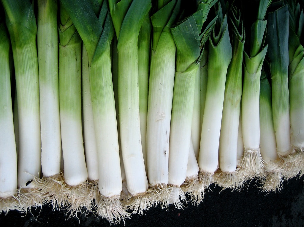 Why Is The Leek A National Symbol In Wales