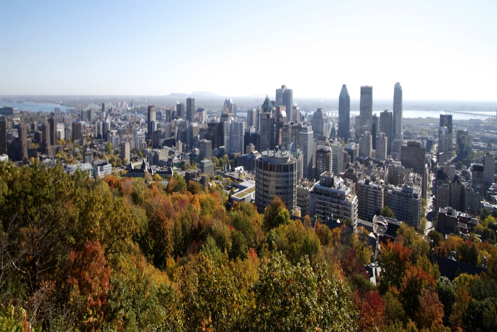 Image result for view from mont royal