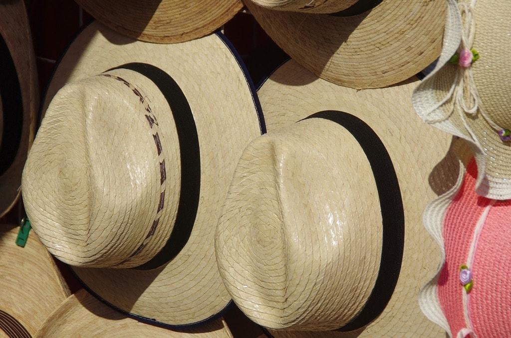 Panama hat   DEZALB / Pixabay