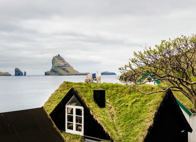 Spot the sheep | Courtesy of visitfaroeislands.com