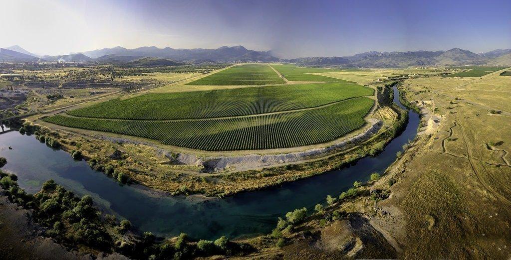 rsz_overview_of_plantaze_vineyard