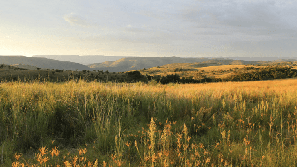 Running_Cradle of Humankind-min