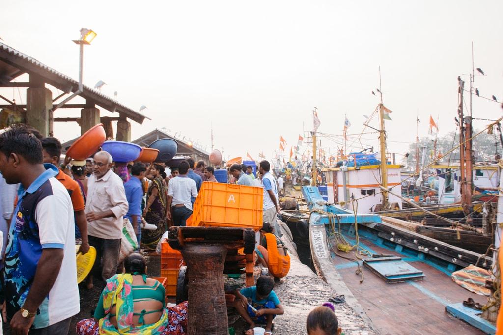 SCTP0068-Shalu-Sassoon Dock00025