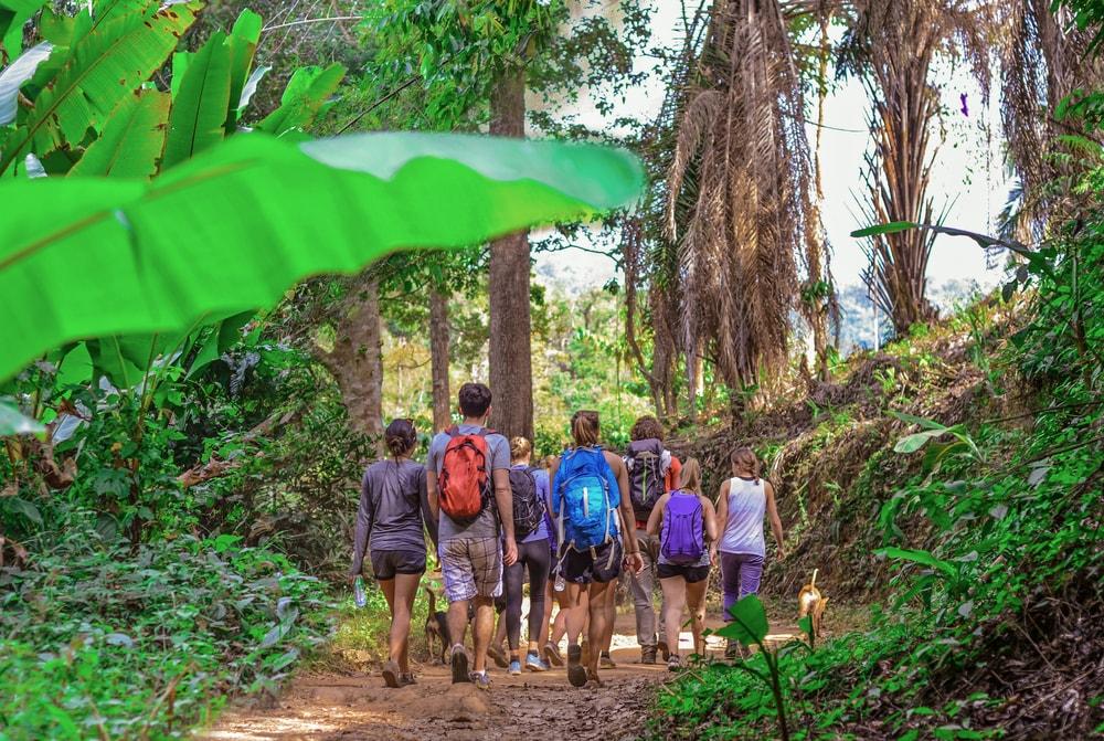 Hiking Khao Yai National Park | © Natalia Maroz / Shutterstock