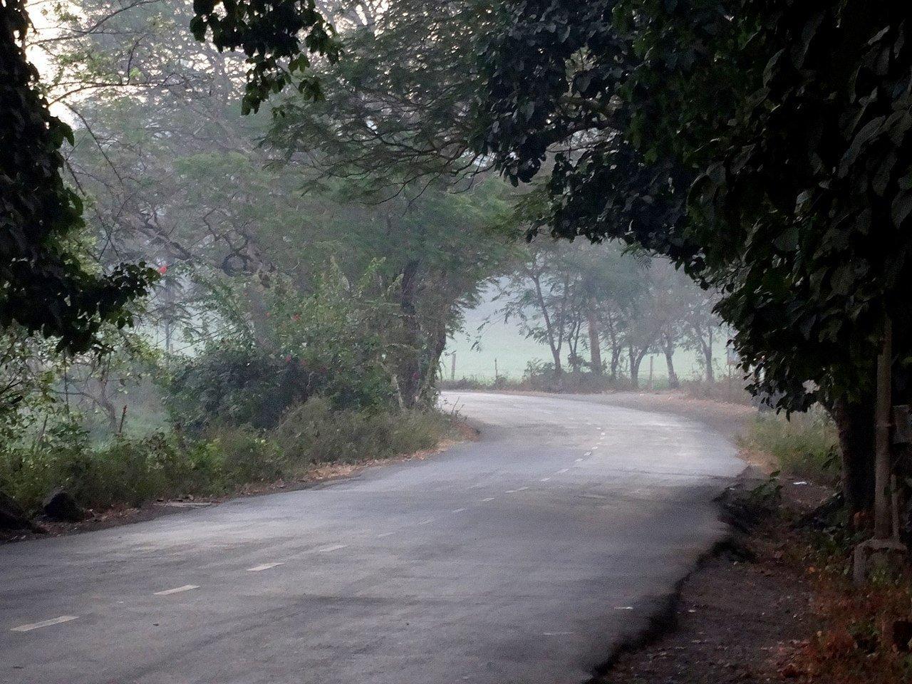 1280px-Road_inside_Aarey_Colony