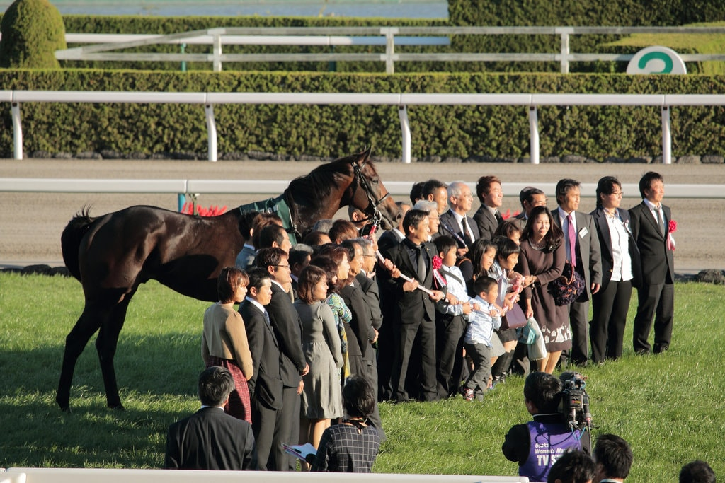 Japan s 2017 kanji of the year is north for Negative show pool horse racing