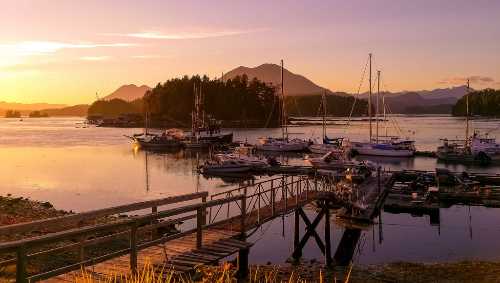12 Reasons Everyone Should Visit Vancouver Island At Least Once