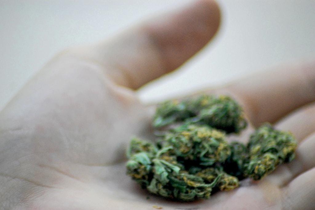 Marijuana | © Katheirne Hitt / Flickr