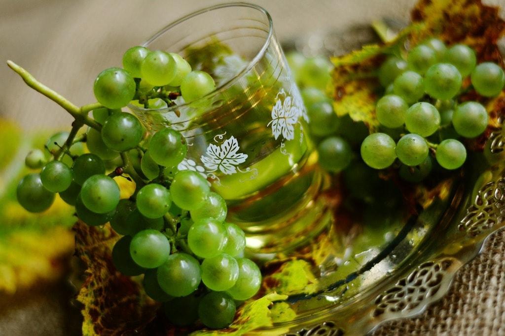 grapes-2808836_1920