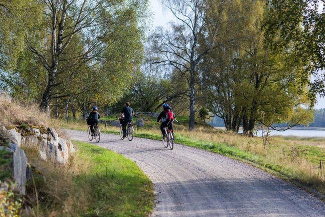 henrik_trygg-biking-4118