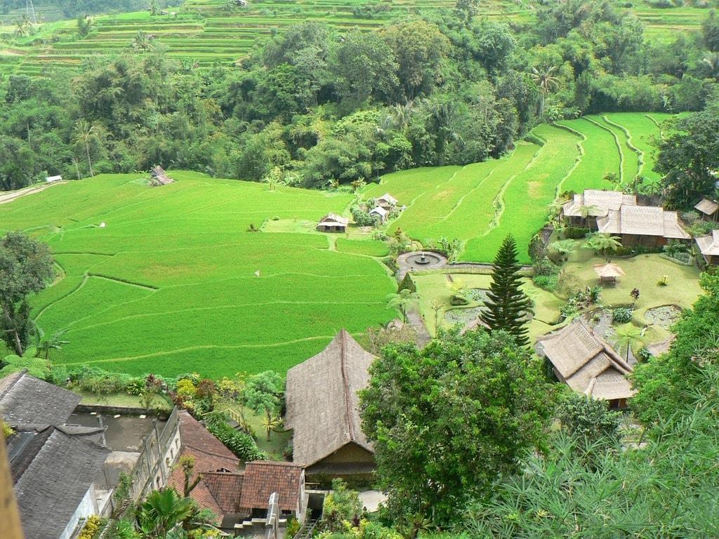 indonesia-1037357_1280