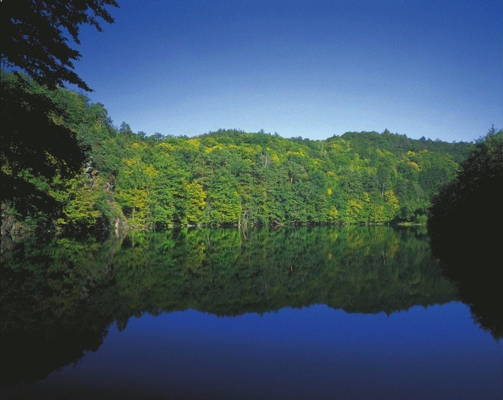lowres_00000023601-nationalpark-thayatal-teich-bei-hardegg-oesterreich-werbung-G. Popp - Edited