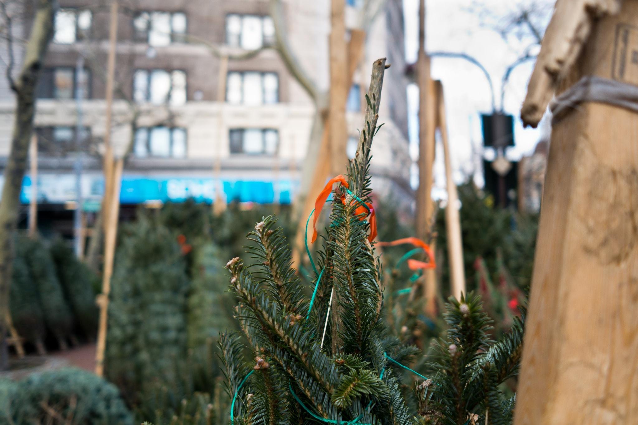 NYC sidewalk stand | Phil Roeder Flickr
