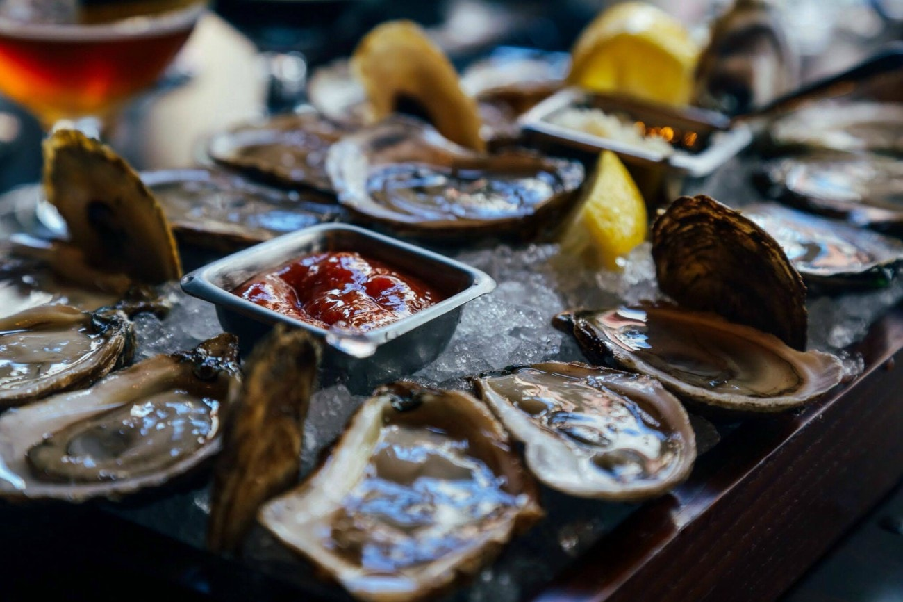 Oysters Discover Halifax