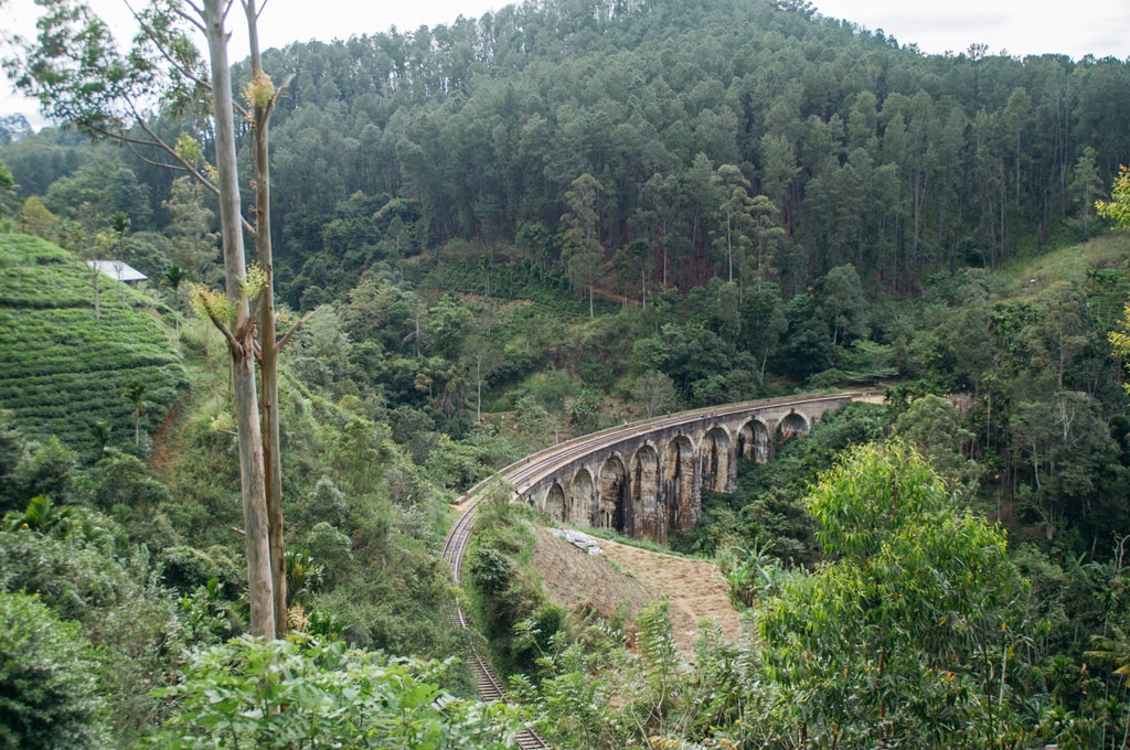RAW SCTP0071-CASTILLO-SRI LANKA-ELLA-NINE ARCH BRIDGE_19
