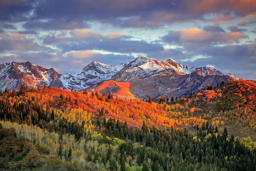 Fall colour with morning light in the Wasatch Mountains, Utah, USA | © Johnny Adolphson/Shutterstock