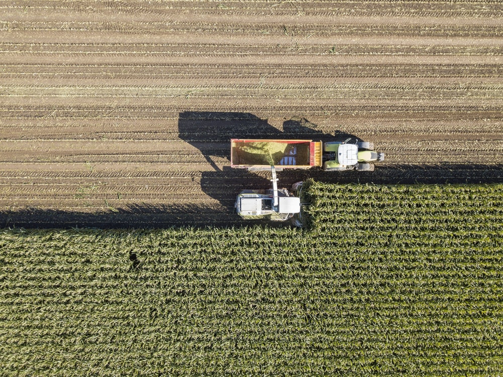 Machines harvesting corn | © Philip Lange/Shutterstock