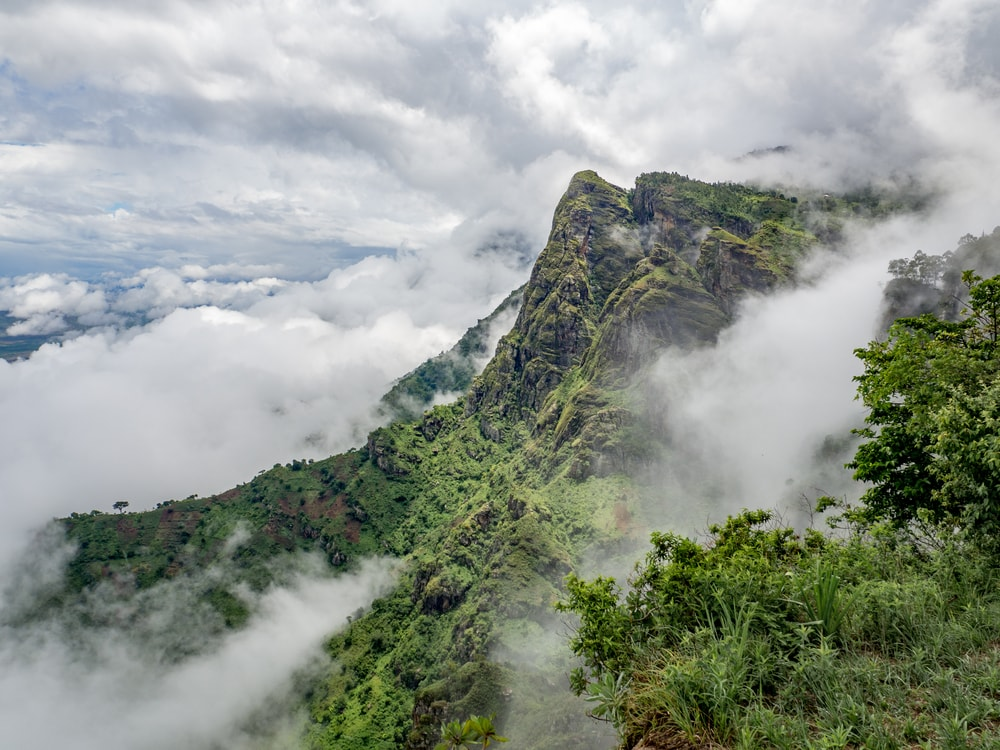 The Usambara Mountains, Tanzania | © mathiasmoeller/Shutterstock