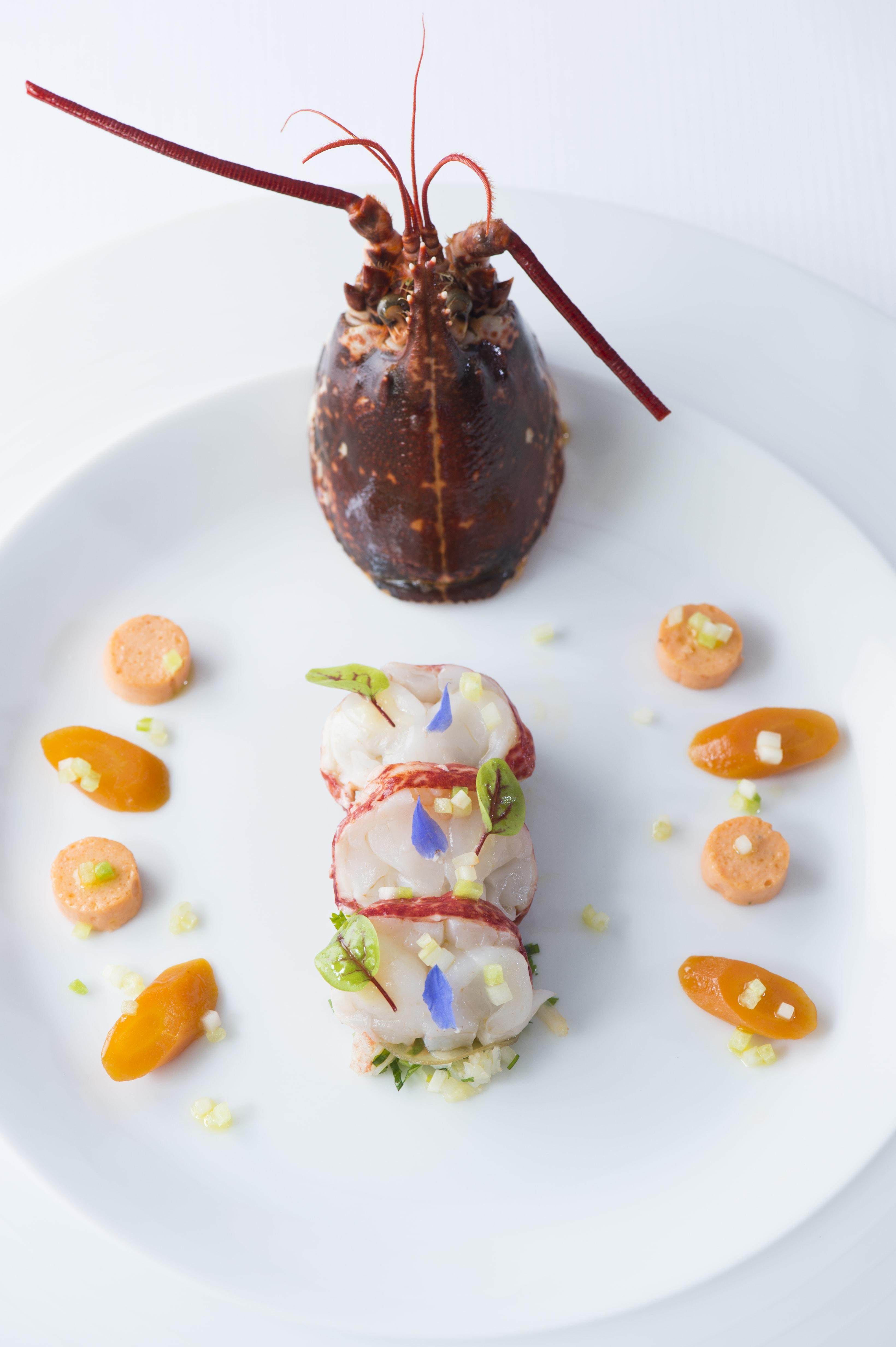 Surprise de homard 2 ©Laurence Mouton-min