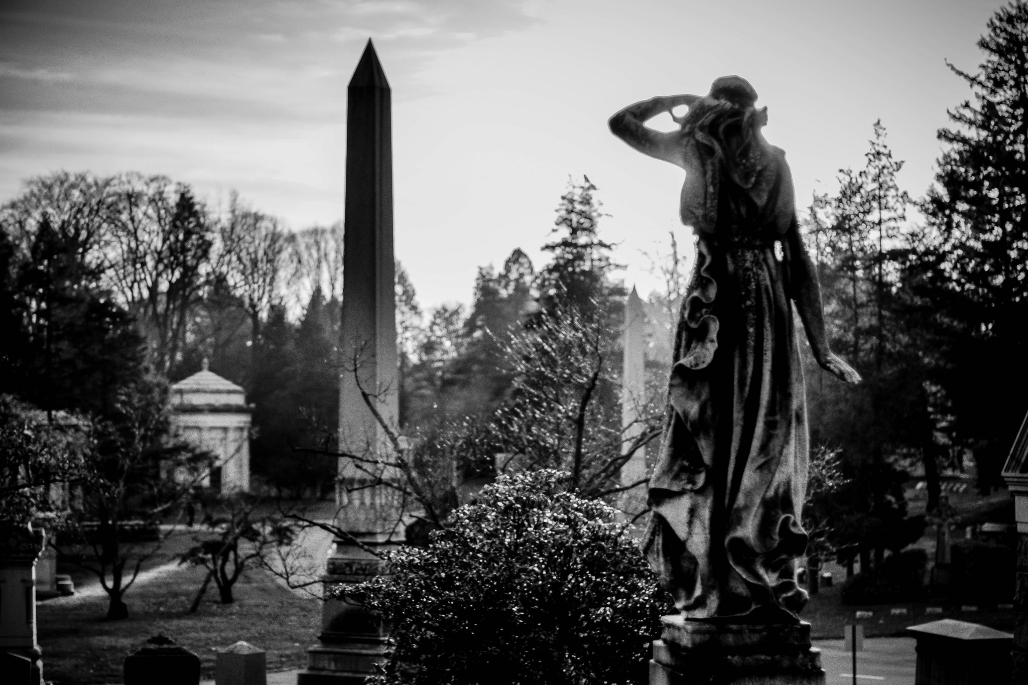 Woodlawn Cemetery | Marcela Flickr