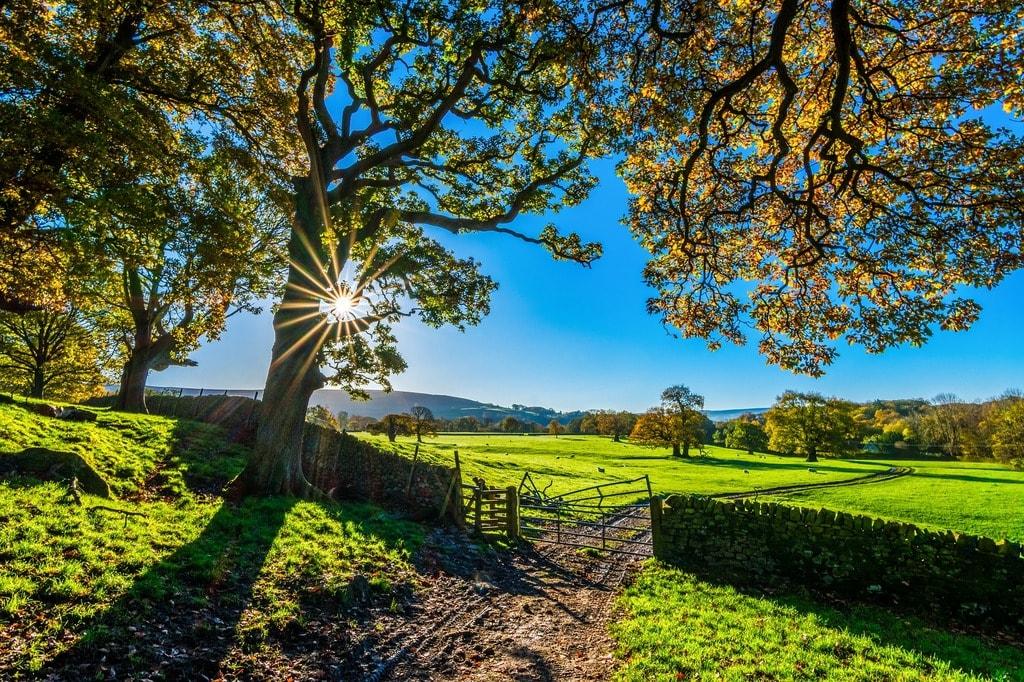 Yorkshire countryside | © Pixabay