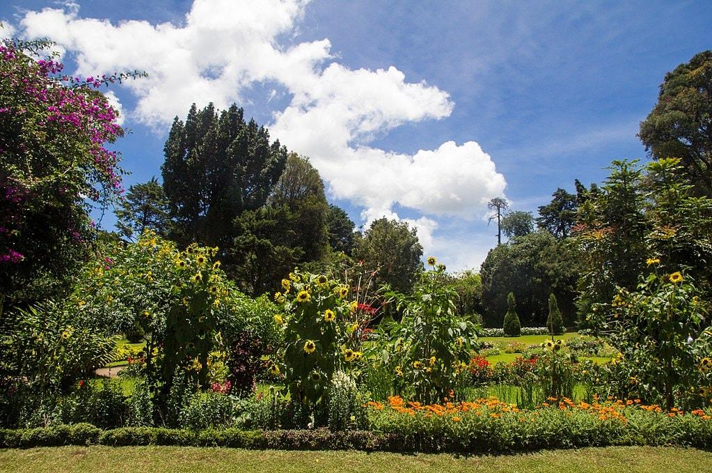 1024px-Victoria_park,_Nuwara_Eliya_-_panoramio