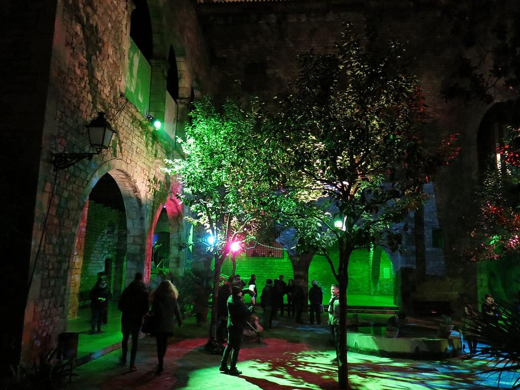 152_Llum_BCN,_instal·lació_Verger_i_oracle,_al_pati_del_Museu_Marès