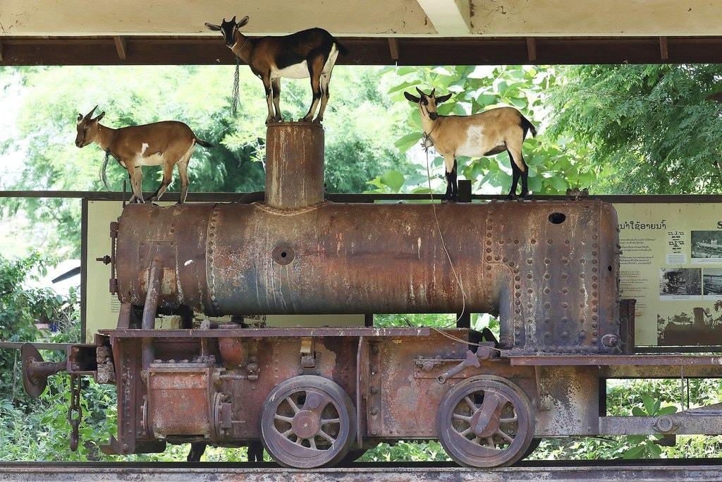 Historic Locomotive, Don Khon | © Basile Morin/WikiCommons