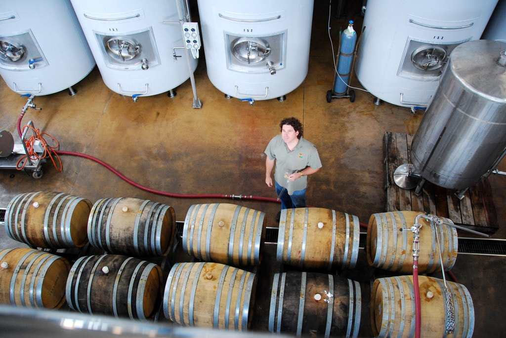 10 years business plan for winery