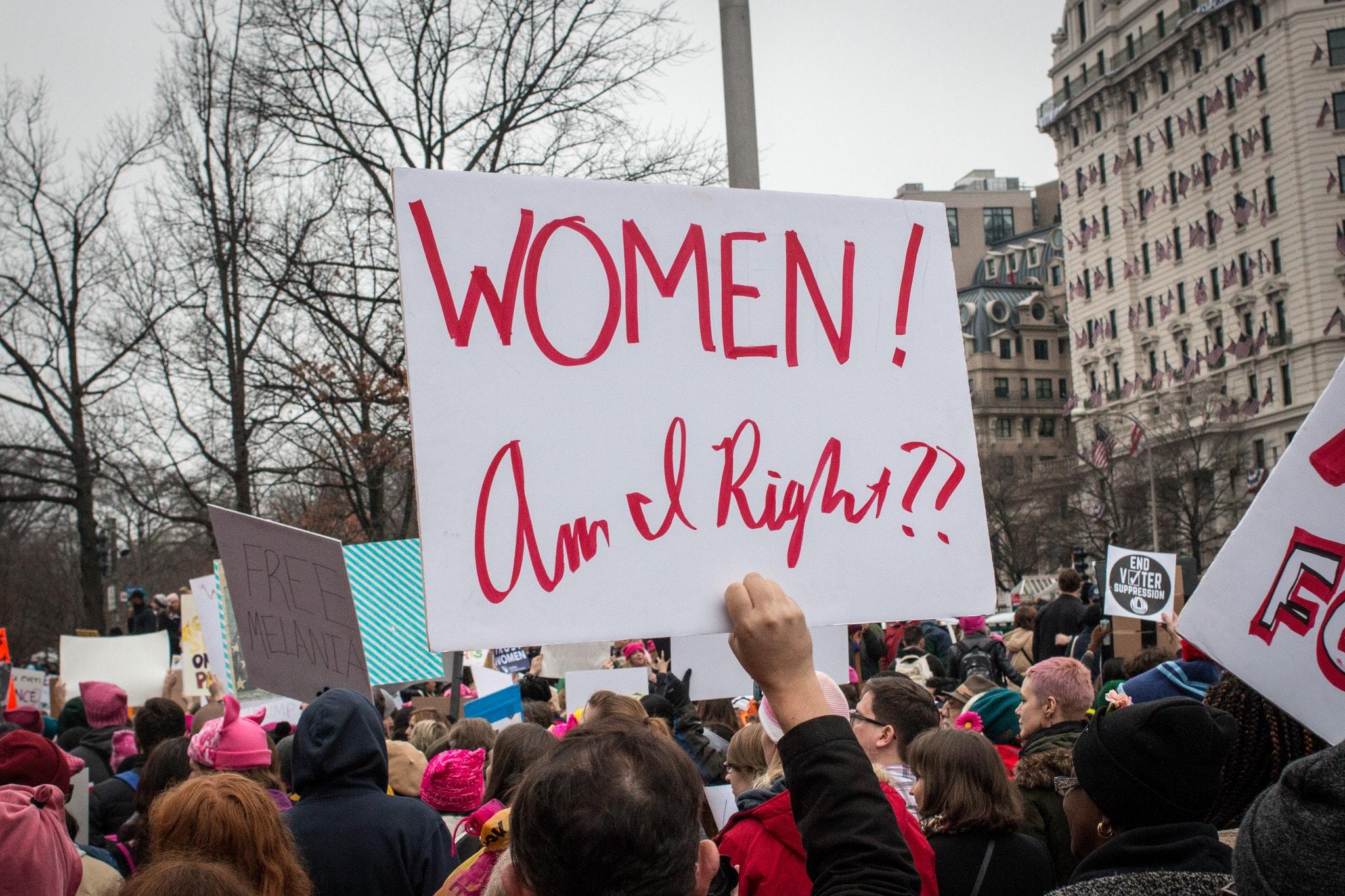 2017 Women's March in DC   © Liz Lemon/Flickr