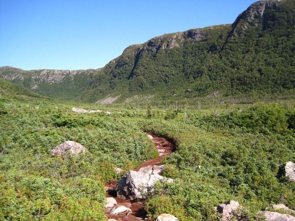Hiking path in Gros Morne National Park | © Natalie Lucier/Flickr