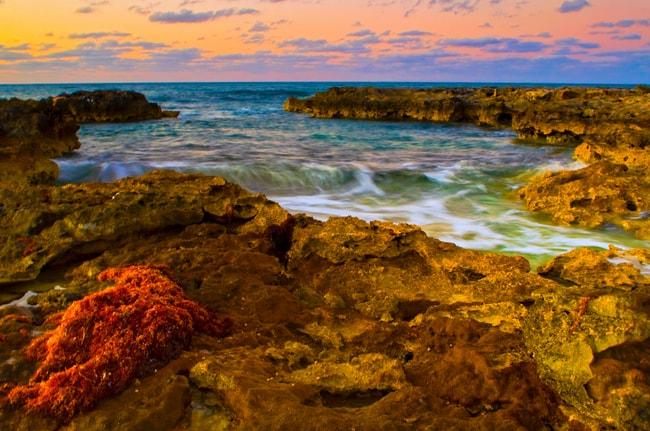 Fine Art Photography - Bahamian