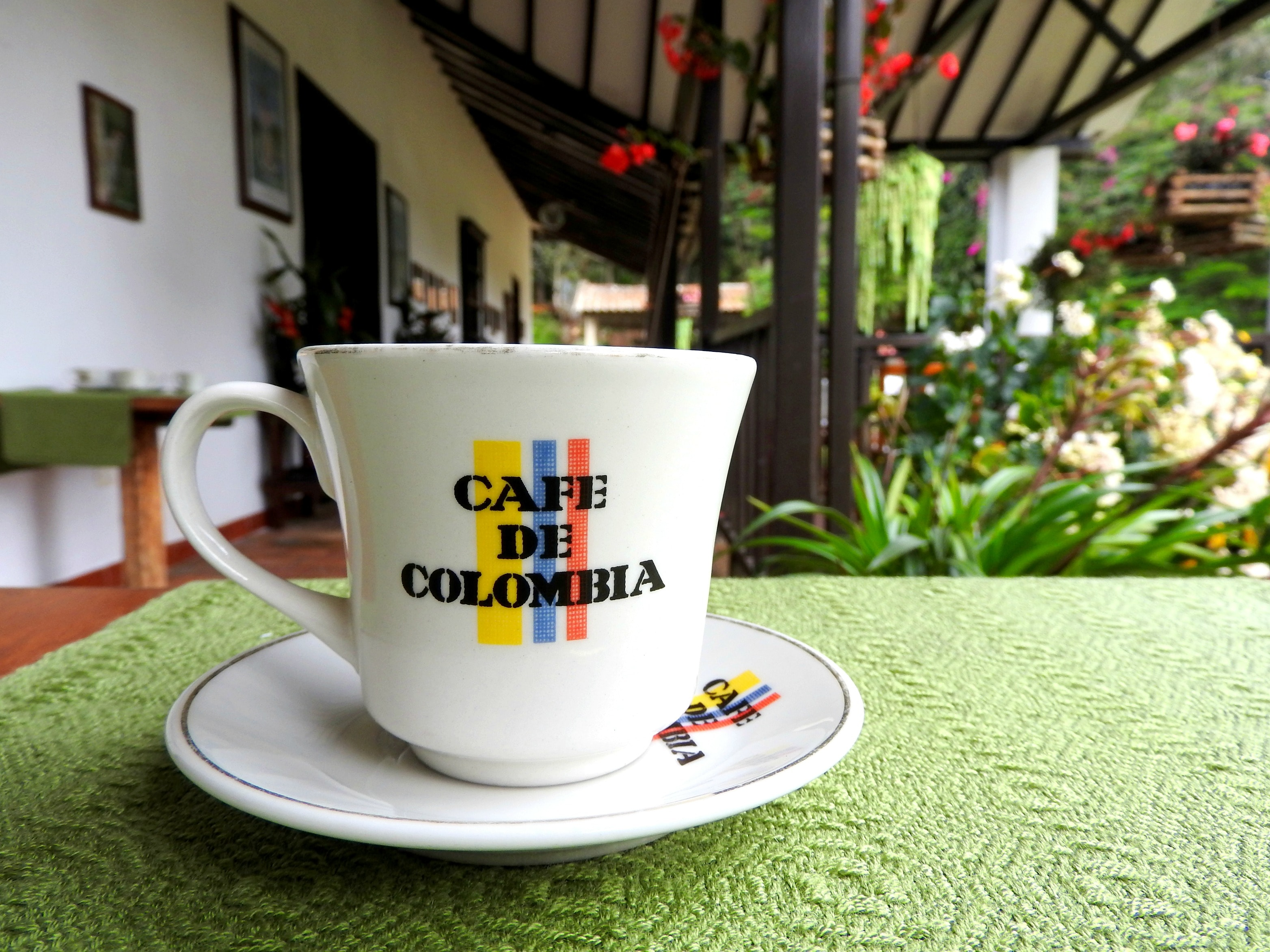 Coffee Tours Near Pereira