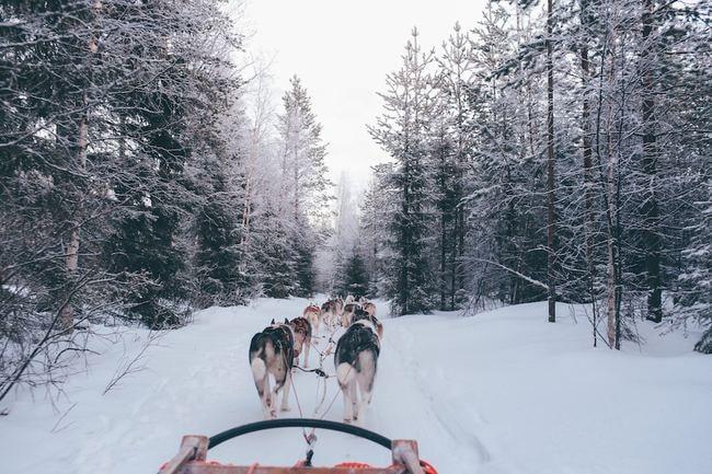 "Finland |<a href=""https://unsplash.com/photos/nzmPi4d5cvc"" target=""_blank"" rel=""noopener"">© Fox Jia/Unsplash</a>"