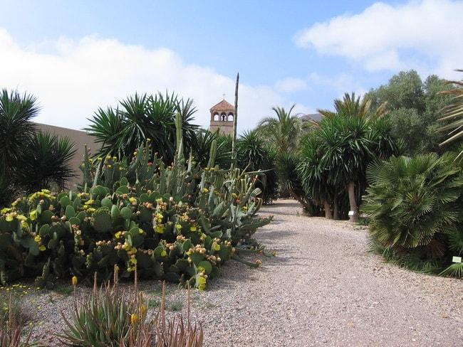 Jardin_Botánico_de_Rodalquilar_-_panoramio