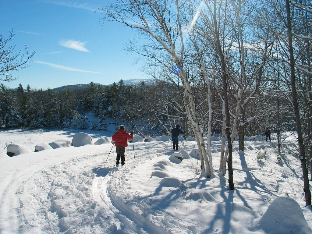 landscape-forest-path-snow-winter-sky-1355981-pxhere.com
