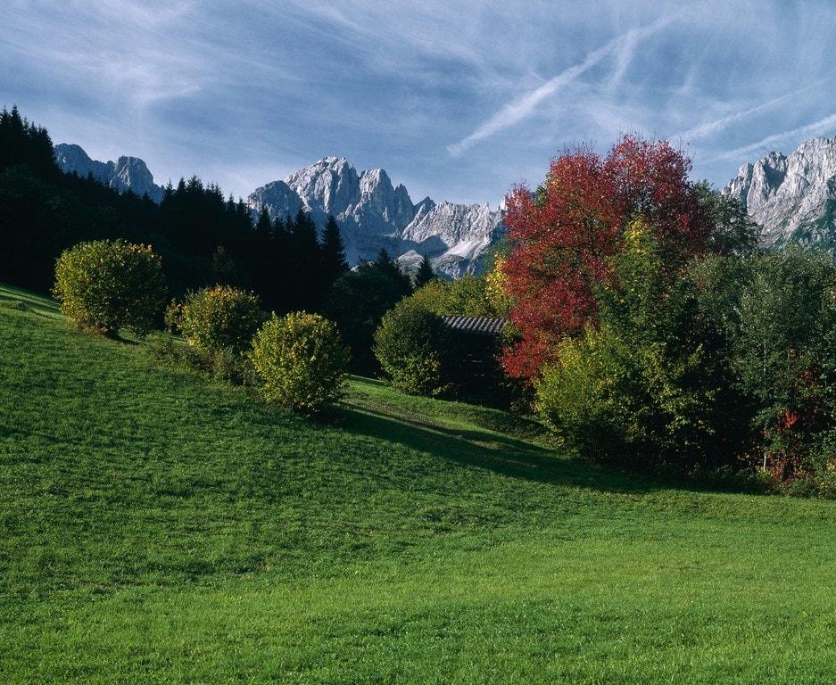 lowres_00000018143-autumn-landscape-near-going-kaiser-mountain-range-tyrol-oesterreich-werbung-Niederstrasser - Edited