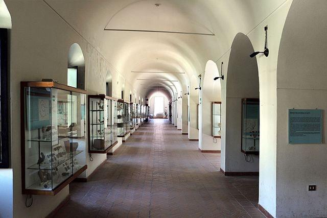 Museo_archeologico_nazionale_di_matera,_una_sala_02 (1)