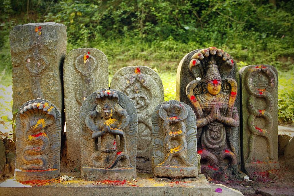 Nagaraja_-_Hindu_Deity_-_India