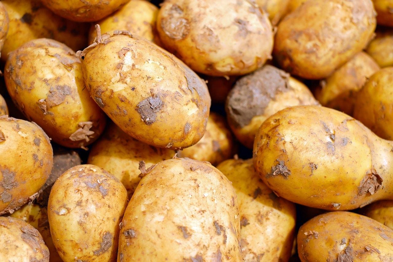 Polish potatoes   © Pixabay