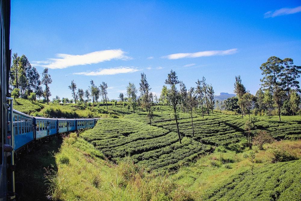 Guwahati-Lumding-Silchar rail route, India | © Belova Tatiana/Shutterstock