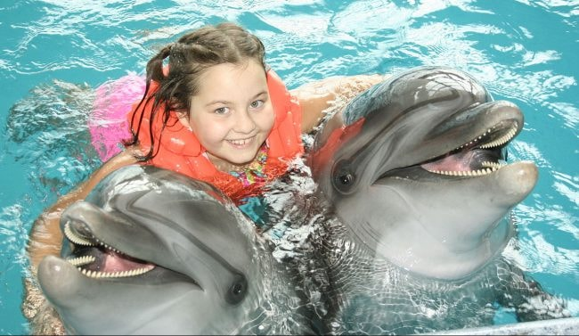Swimming_with_Dolphin2