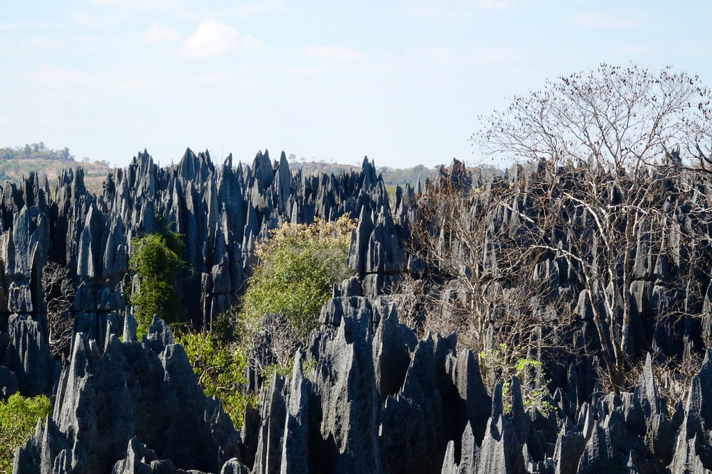 Tsingy_scaled