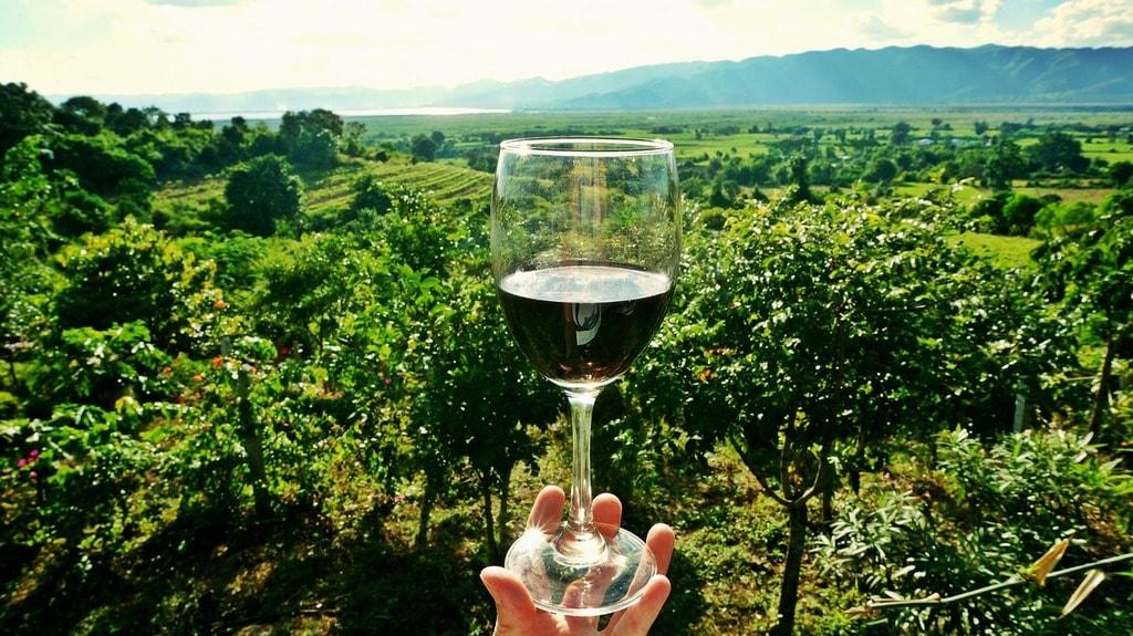 wine-2173239_1280