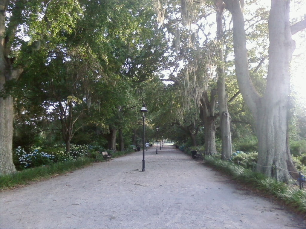 1024px-Hampton_Park_2