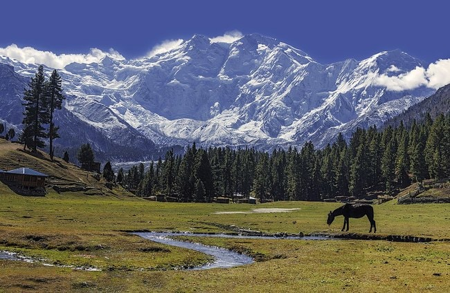 1200px-Fairy_Meadows_and_the_view_of_Nanga_Parbat