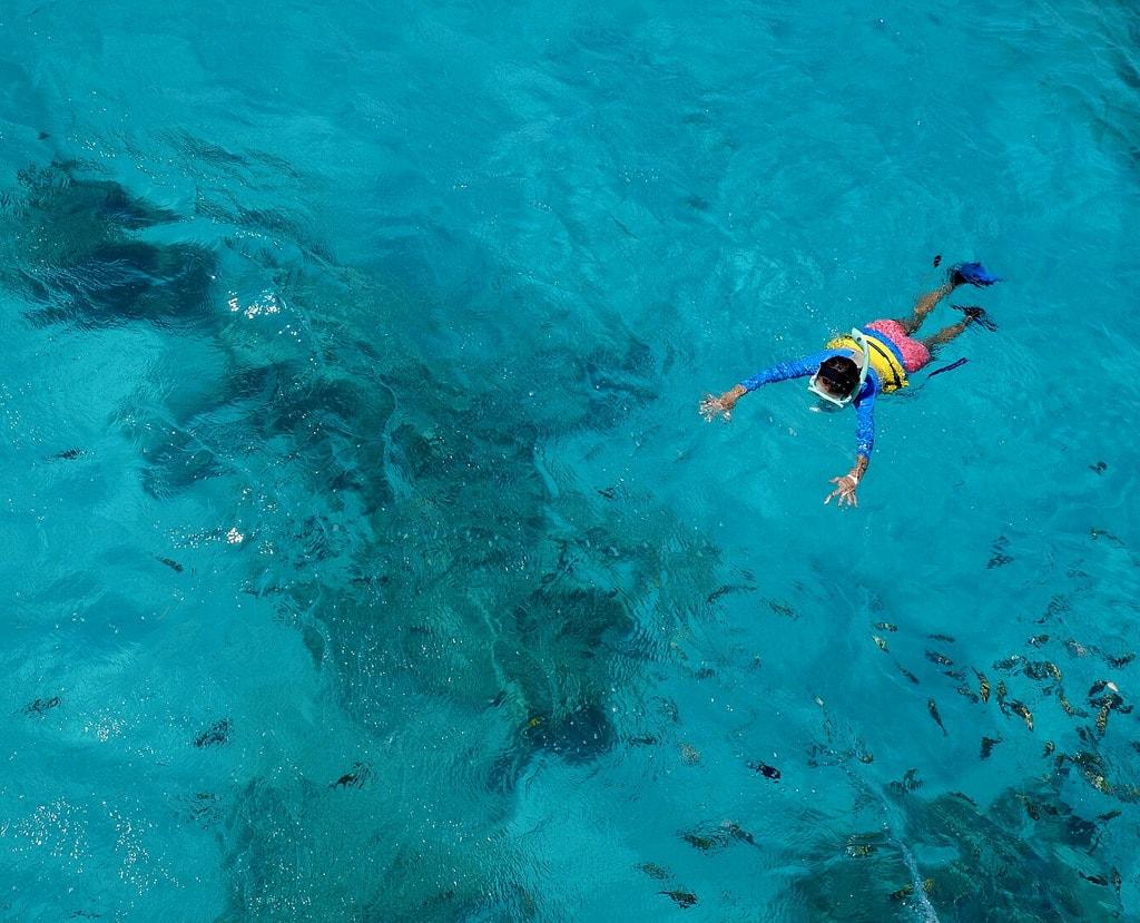 Snorkeling   © Tom Hart/Flickr