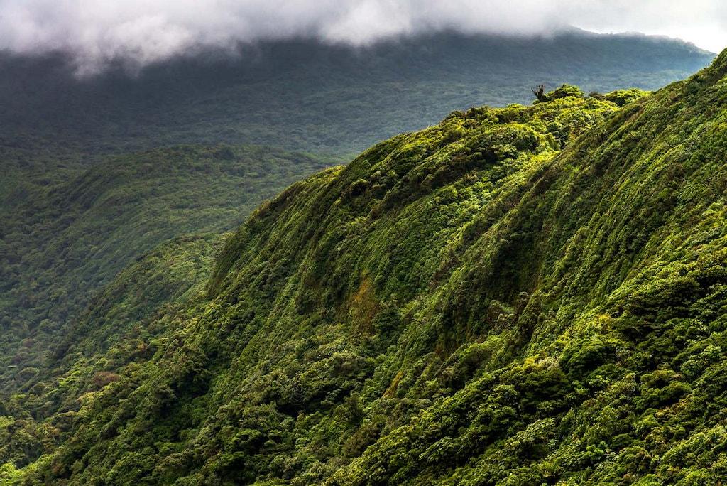 Oblast Central Valley na Kostarice
