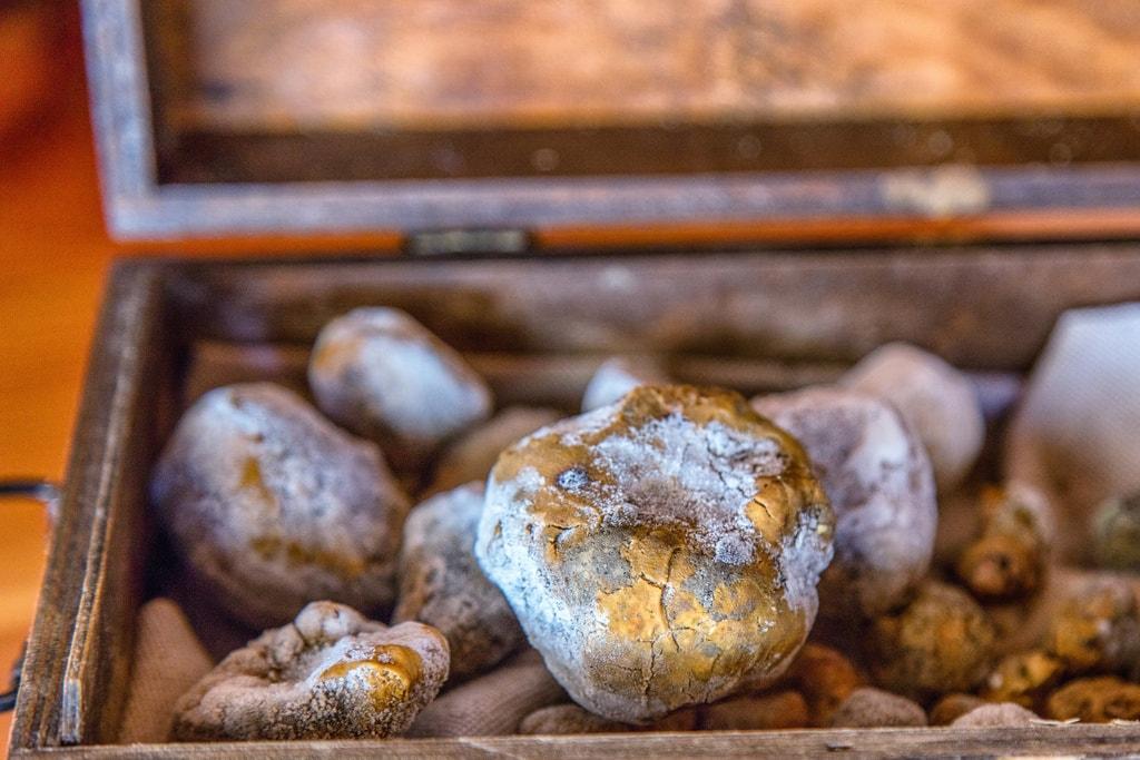 croatia truffle